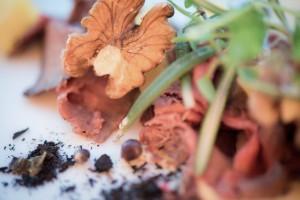 Pumphuset matbilder matt färg till hemsida-4